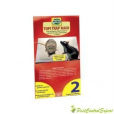 Capcana adeziva pentru sobolani Mouse Trap Maxi Top 35