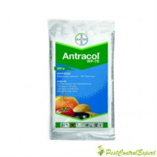 Fungicid de contact Antracol 70 wp 200 gr.