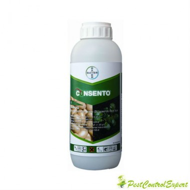 Fungicid sistemic Consento 450 sc 100 ml