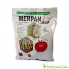 Fungicid cu actiune multi-site impotriva rapanului la pomi fructiferi Merpan 80 wdg 1kg
