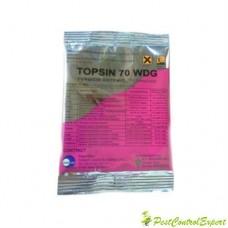 Fungicid cu actiune preventiva si curativa impotriva bolilor Topsin 70 wdg 100 gr.